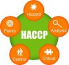 HACCP - Consulting Service